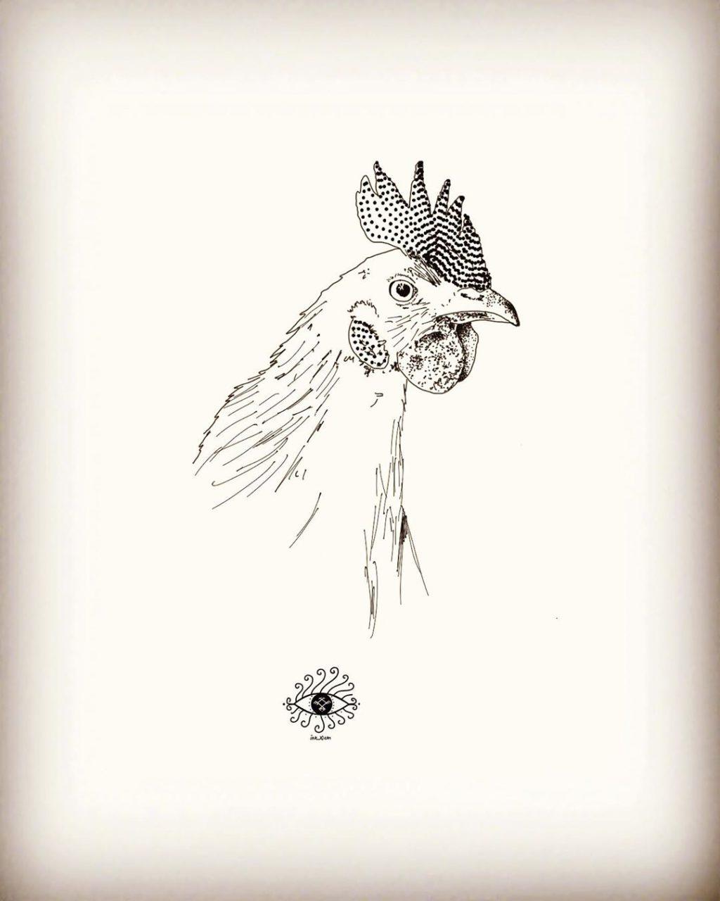 Animals & la natura (il.)