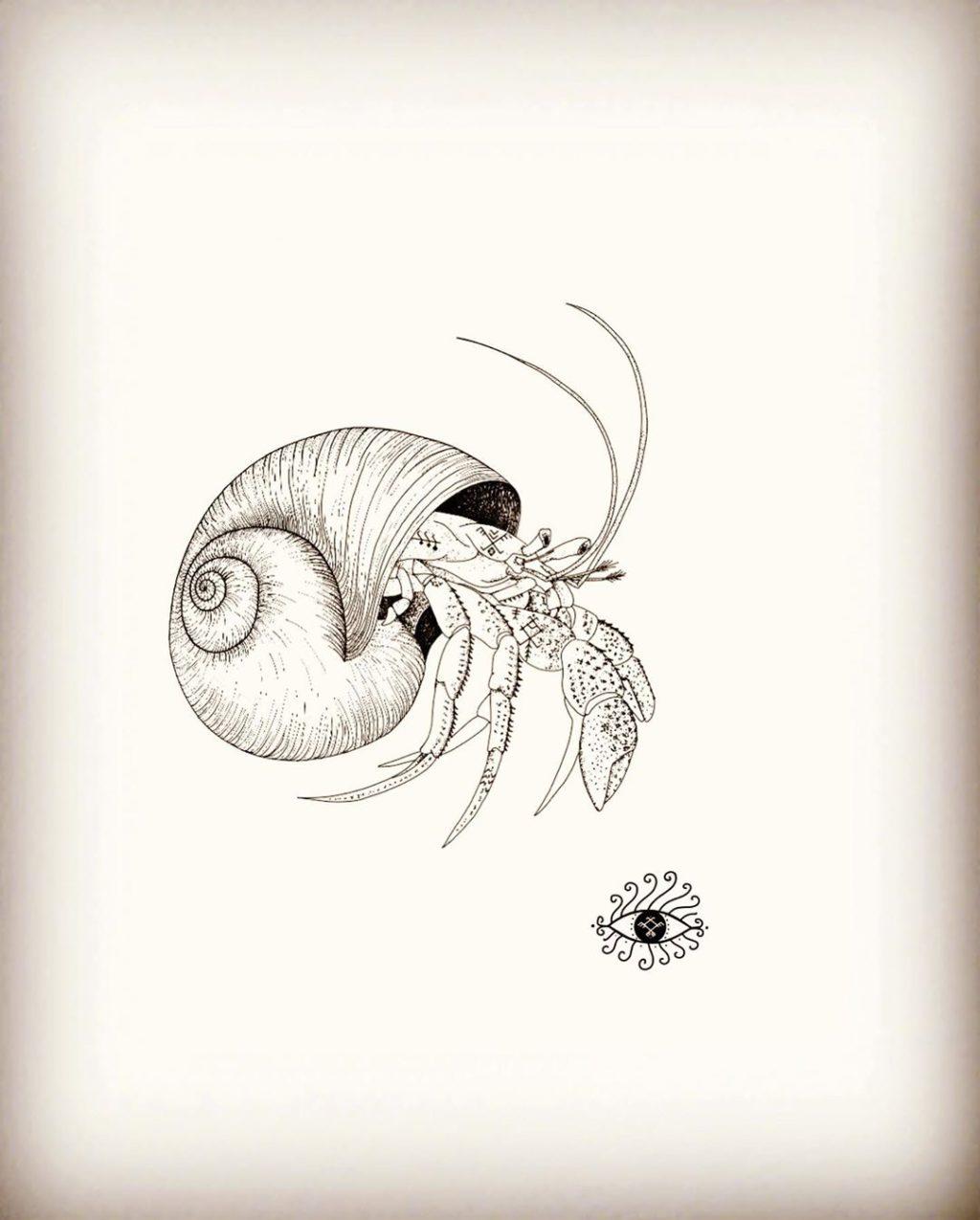 Animales & Nature (ill.)