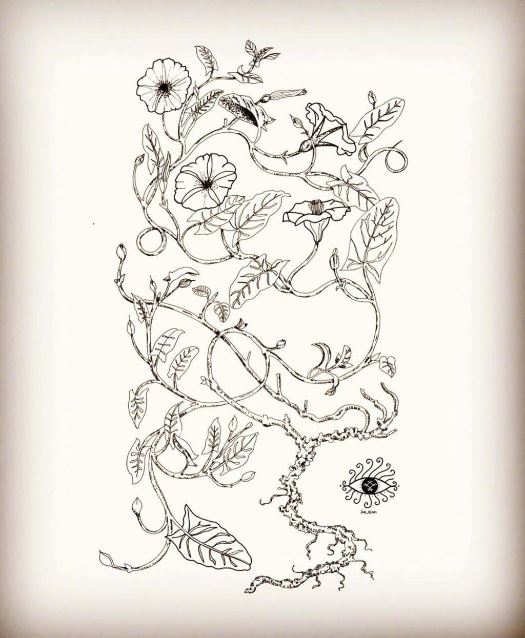 Animales & Naturaleza (il.)